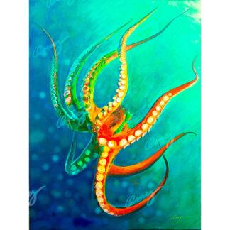 Seascapes & Sea Creatures